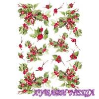 Calambour Декупажна хартия PAU 12 42,5x30,4см- Коледни Плодове