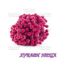 Fabrika Decoru FD28 - Sugar Berries Red 40бр