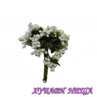 Захарни тичинки- Бели