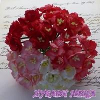 Цветя от Мълбери хартия- Черешов цвят 25мм Микс Бяло и Червено 5 бр