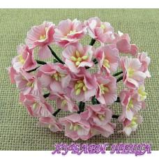 Цветя от Мълбери хартия Ябълков цвят 25мм Розово 5бр