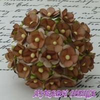 Цветя от Мълбери хартия Цветчета 15мм Кафяво/Бяло 10бр