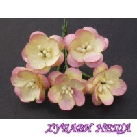 Цветя от Мълбери хартия- Черешов цвят 25мм 2-Тона Шампанско/Розово 5 бр
