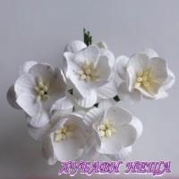 Цветя от Мълбери хартия- Черешов цвят 25мм Бял 5 бр