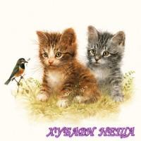 Салфетка- 0042 Kitten Friend
