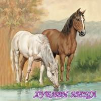 Салфетка- 423 Horses