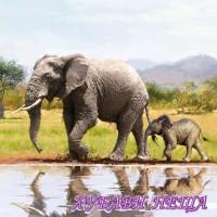 Салфетка- 0878 Animal Safari
