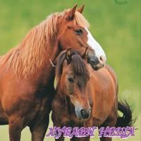Салфетка- 0985 Two Horses