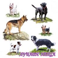 Салфетка- 0996 Dogs