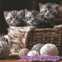 Салфетка- 1010 Striped Kittens