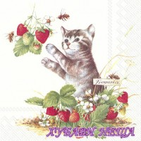 Салфетка- 1399 Kitty and Strawberries 1бр