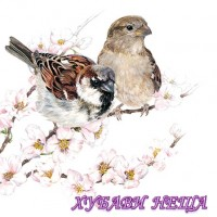Салфетка- 387A Sparrows Blossom