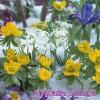Салфетка- 546 Flowers In Snow