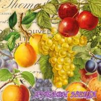 Салфетка за декупаж- 294 Есенни Плодове