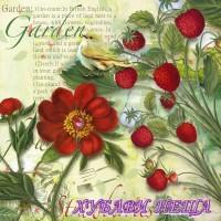 Салфетка- 1123 Strawberry Garden