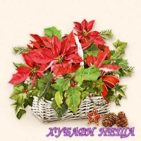 Салфетка- K185 Poinsettia In Basket 1бр