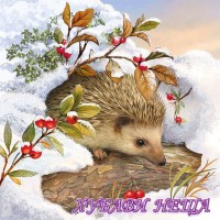 Салфетка- K280 Hedgehog In Snow