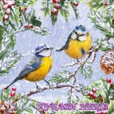 Салфетка- K472 Chirping Birds