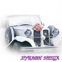 Салфетка- 006 Wedding Car