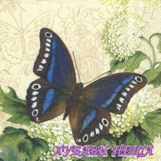 Салфетка- 1124 Butterfly Summer cream