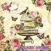 Салфетка- 899 Bird on Vintage Cage