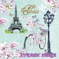 Салфетка- 233 Bike In Paris